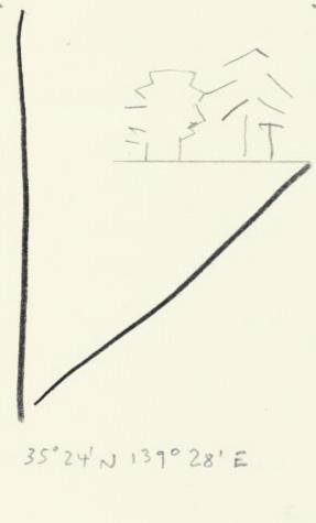 olivier-aubry-dessin-arbres